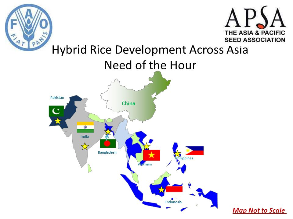 Hybrid Rice Development Across Asia Need Of The Hour India Pakistan