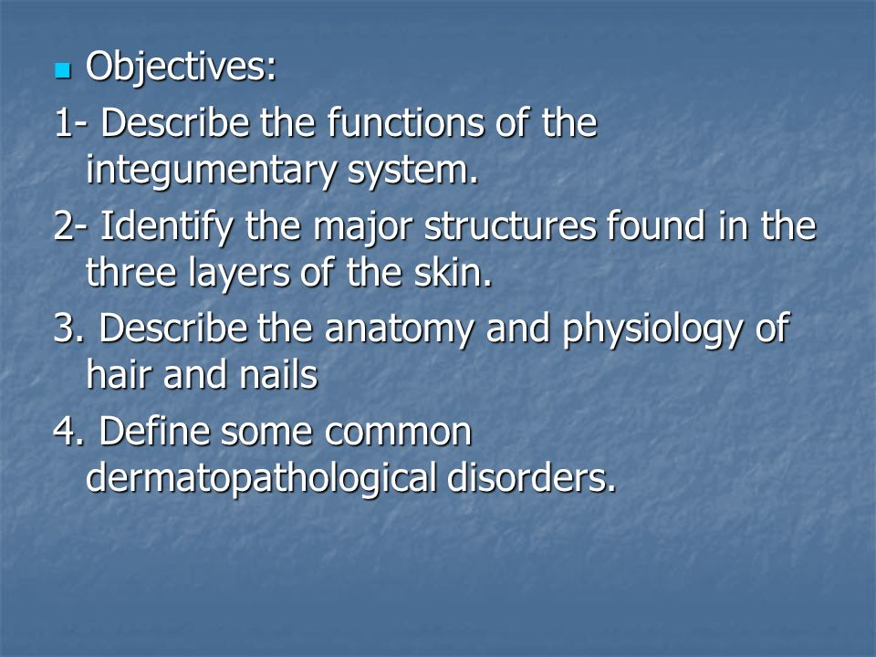 Integumentary System Chapter 5. Objectives: Objectives: 1- Describe ...