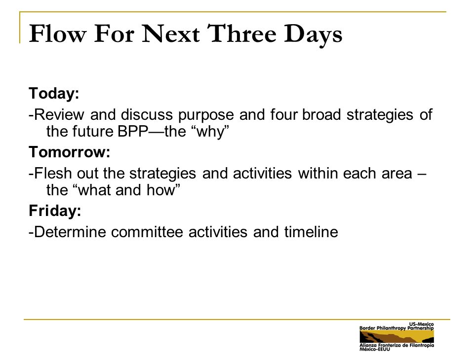 Flow For Next Three Days Today: -Review and discuss purpose and four broad strategies of the future BPP—the why Tomorrow: -Flesh out the strategies and activities within each area – the what and how Friday: -Determine committee activities and timeline
