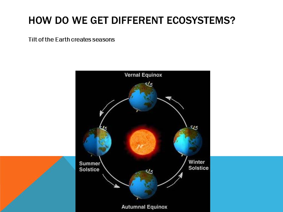 HOW DO WE GET DIFFERENT ECOSYSTEMS Tilt of the Earth creates seasons
