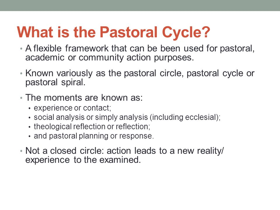 What is the Pastoral Cycle.