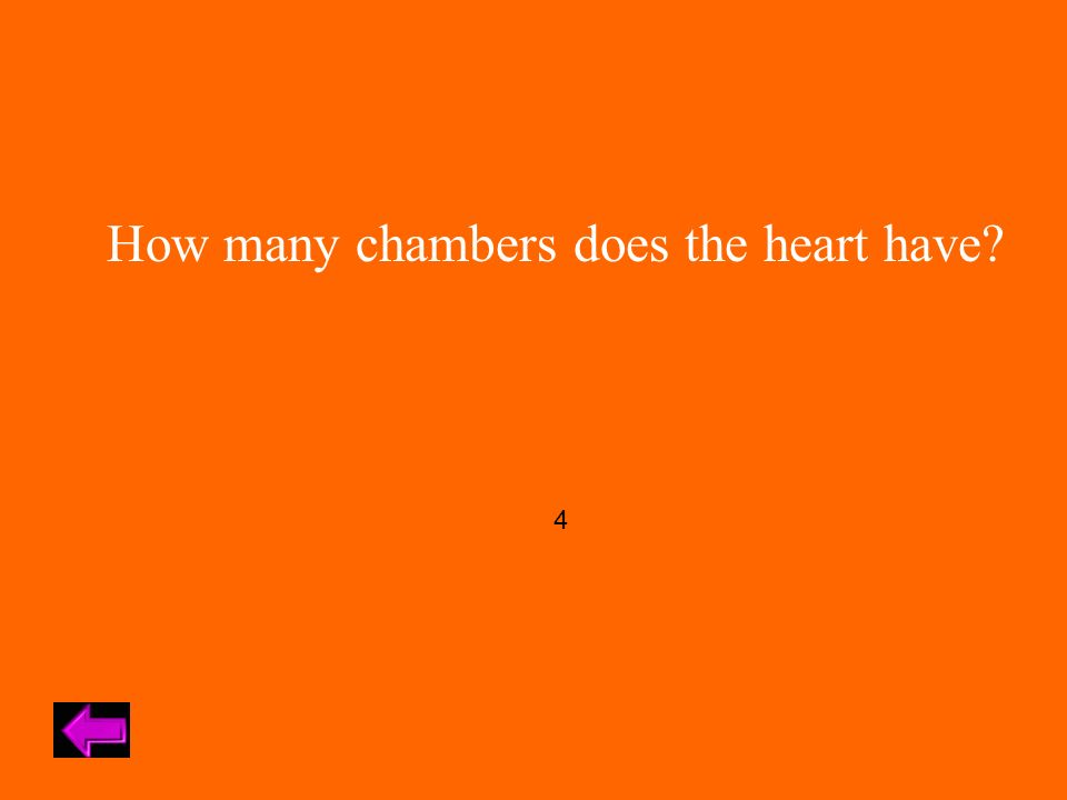 How many chambers does the heart have 4