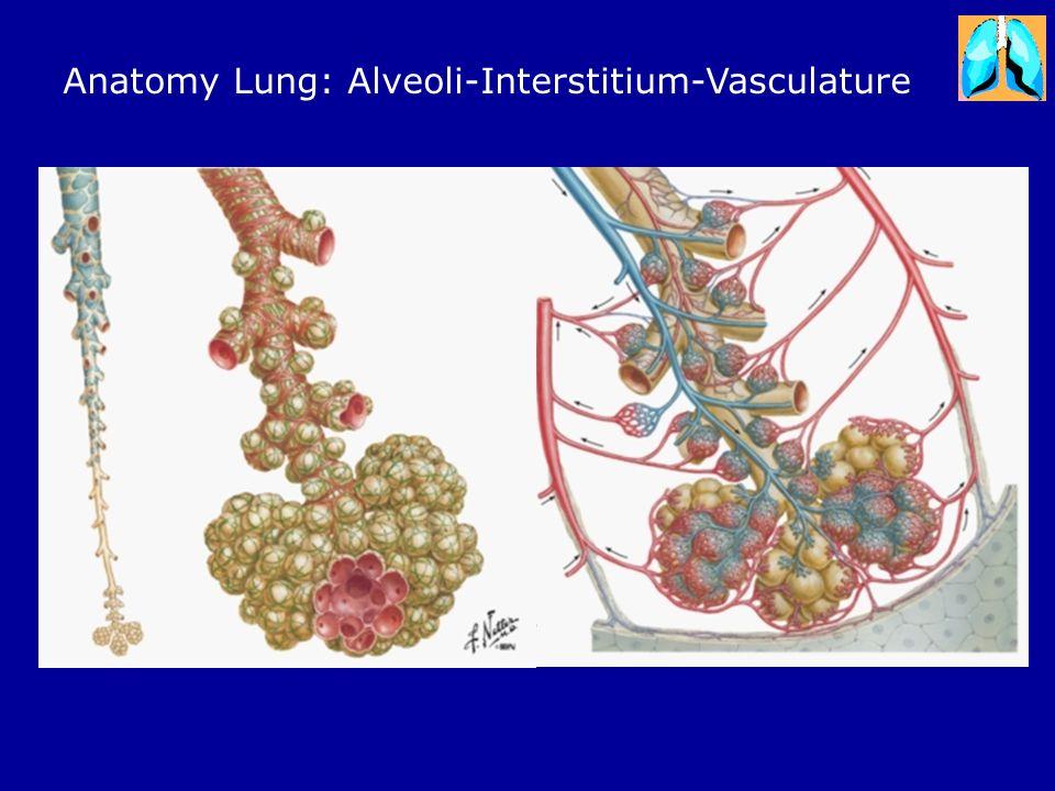 Living with Pulmonary Fibrosis Gerard Cox FIRH – SJHH McMaster ...