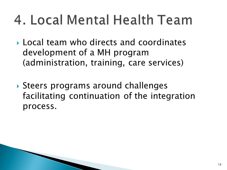  Local team who directs and coordinates development of a MH program (administration, training, care services)  Steers programs around challenges facilitating continuation of the integration process.
