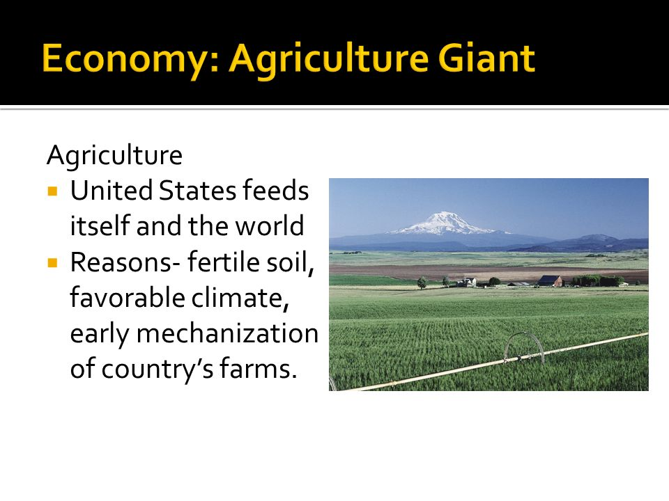 Agriculture  United States feeds itself and the world  Reasons- fertile soil, favorable climate, early mechanization of country's farms.