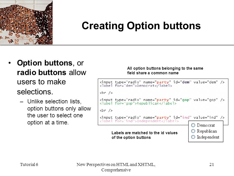 XP Tutorial 6New Perspectives on HTML and XHTML, Comprehensive 21 Creating Option buttons Option buttons, or radio buttons allow users to make selections.