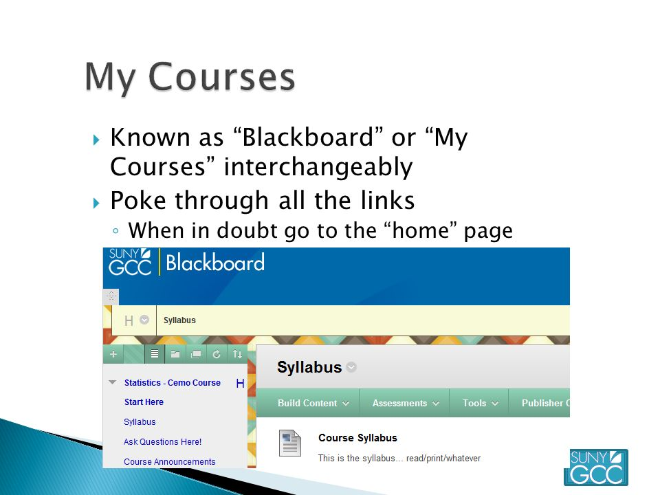  Known as Blackboard or My Courses interchangeably  Poke through all the links ◦ When in doubt go to the home page