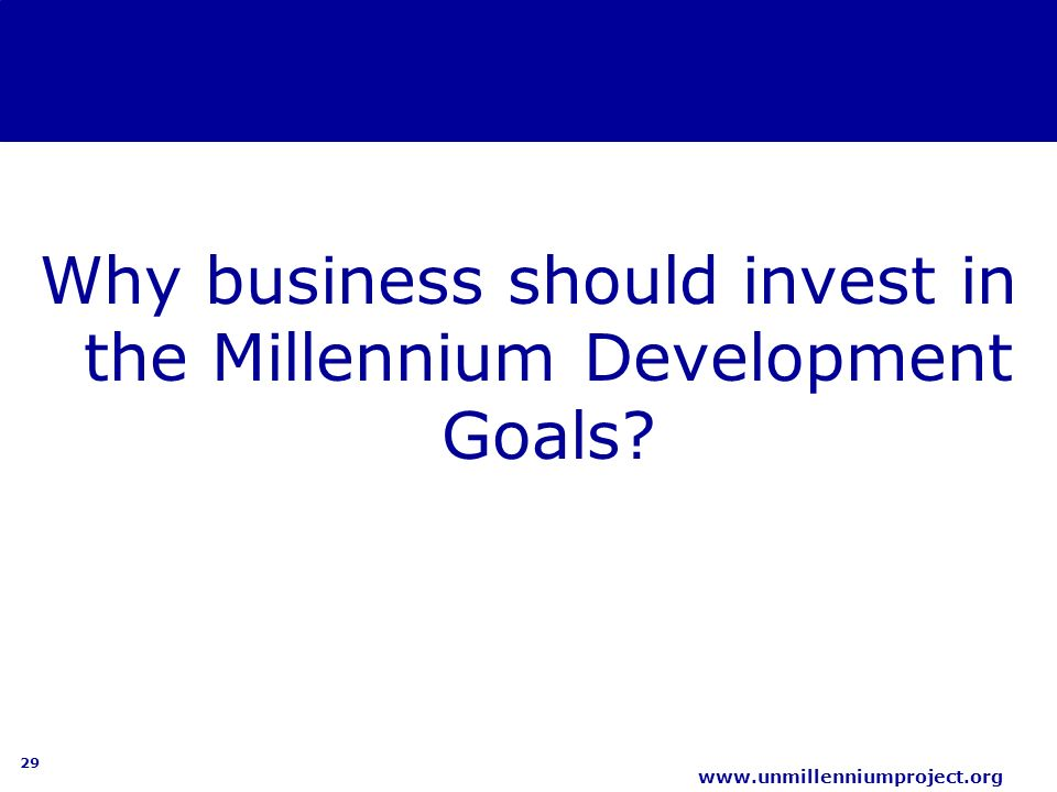 business for millennium development