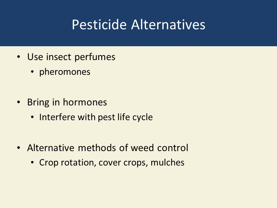 Pesticide Alternatives Use insect perfumes pheromones Bring in hormones Interfere with pest life cycle Alternative methods of weed control Crop rotation, cover crops, mulches