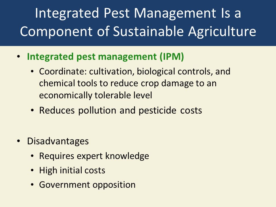 Integrated Pest Management Is a Component of Sustainable Agriculture Integrated pest management (IPM) Coordinate: cultivation, biological controls, and chemical tools to reduce crop damage to an economically tolerable level Reduces pollution and pesticide costs Disadvantages Requires expert knowledge High initial costs Government opposition