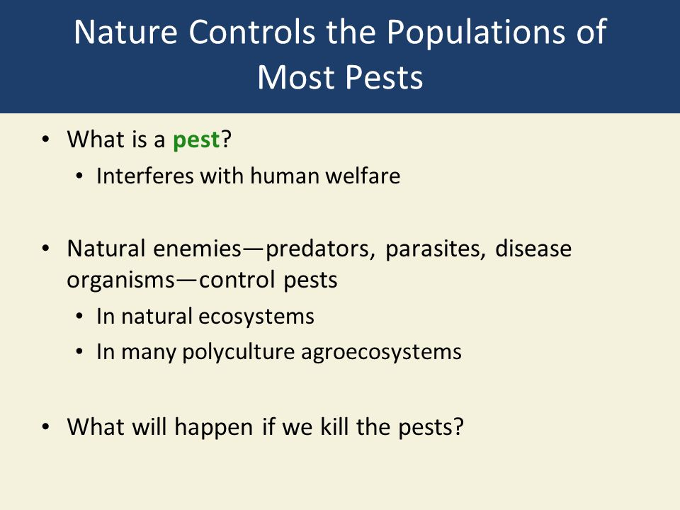 Nature Controls the Populations of Most Pests What is a pest.
