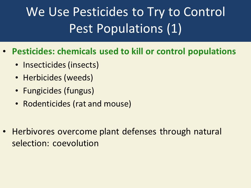 We Use Pesticides to Try to Control Pest Populations (1) Pesticides: chemicals used to kill or control populations Insecticides (insects) Herbicides (weeds) Fungicides (fungus) Rodenticides (rat and mouse) Herbivores overcome plant defenses through natural selection: coevolution
