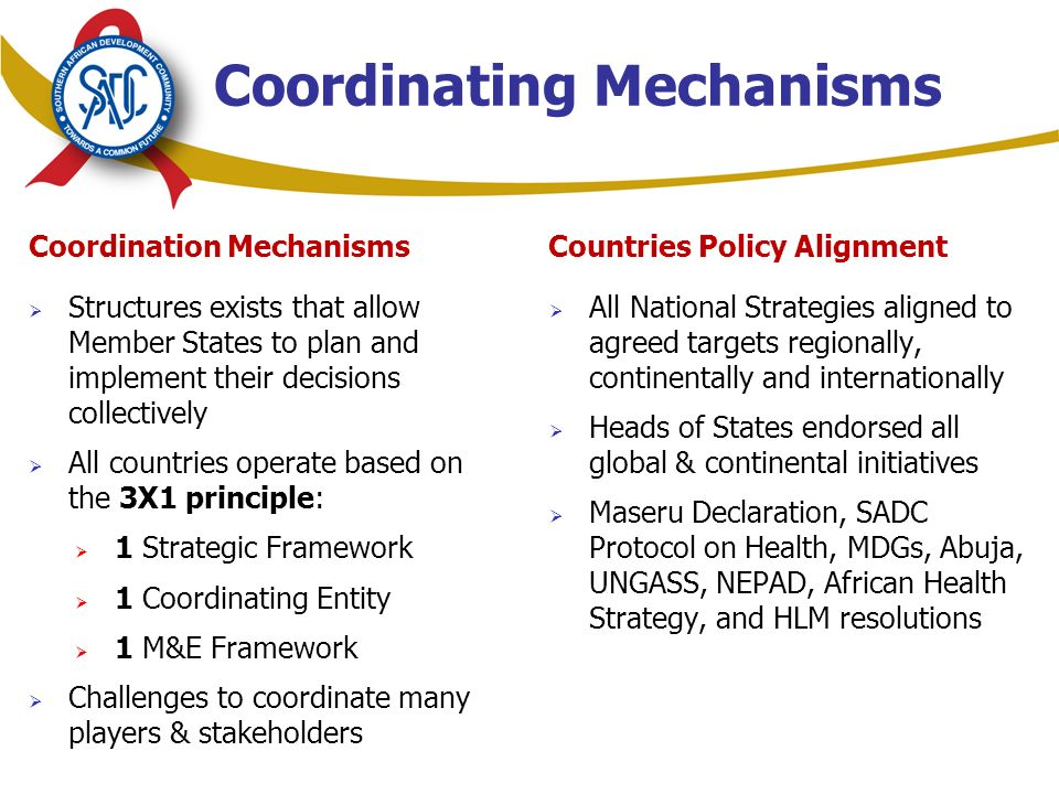 Coordination Mechanisms  Structures exists that allow Member States to plan and implement their decisions collectively  All countries operate based on the 3X1 principle:  1 Strategic Framework  1 Coordinating Entity  1 M&E Framework  Challenges to coordinate many players & stakeholders Countries Policy Alignment  All National Strategies aligned to agreed targets regionally, continentally and internationally  Heads of States endorsed all global & continental initiatives  Maseru Declaration, SADC Protocol on Health, MDGs, Abuja, UNGASS, NEPAD, African Health Strategy, and HLM resolutions Coordinating Mechanisms