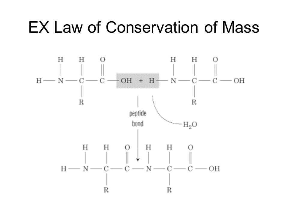 EX Law of Conservation of Mass