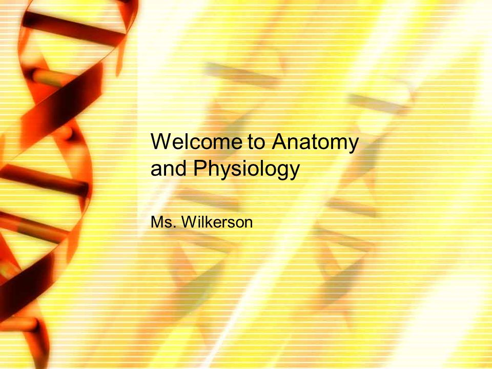 Welcome to Anatomy and Physiology Ms. Wilkerson. Welcome to A&P In ...