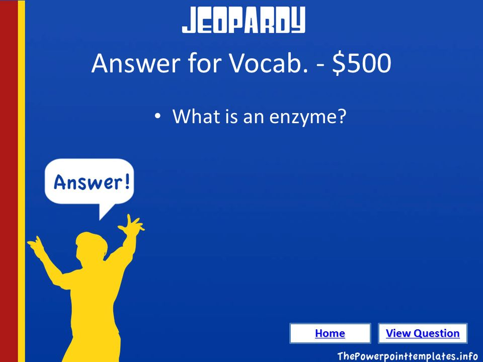 Answer for Vocab. - $500 What is an enzyme Home View Question View Question