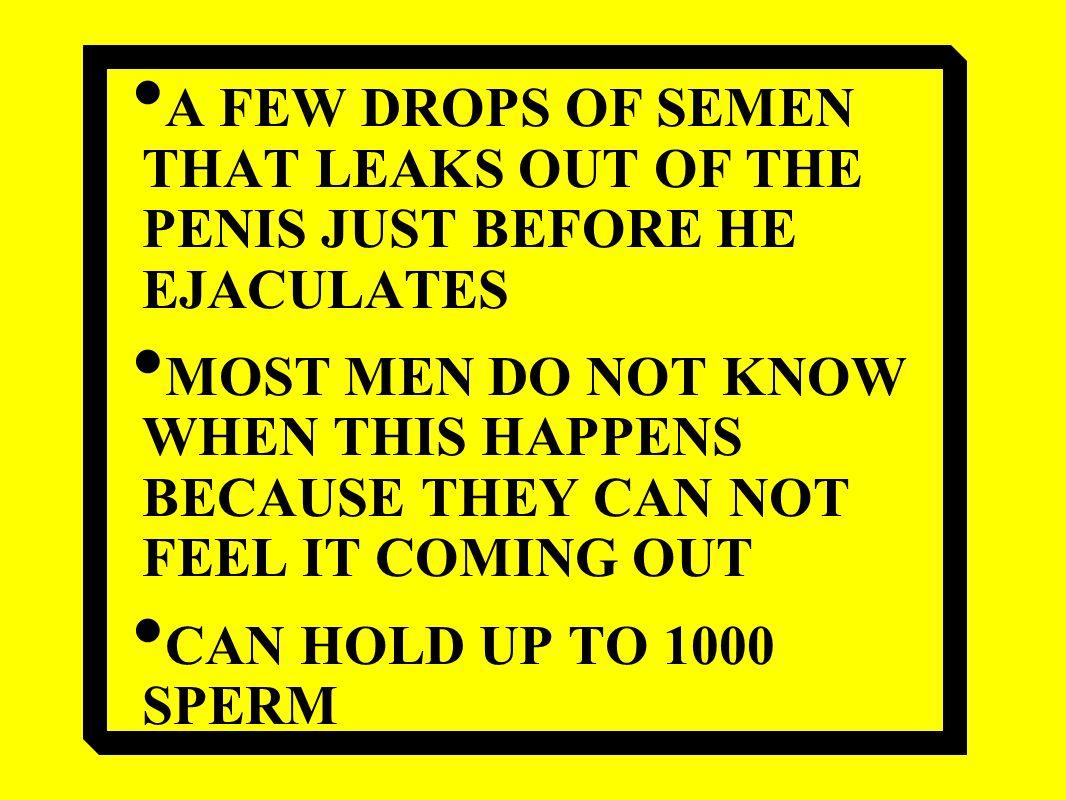 Wet anal porn girls