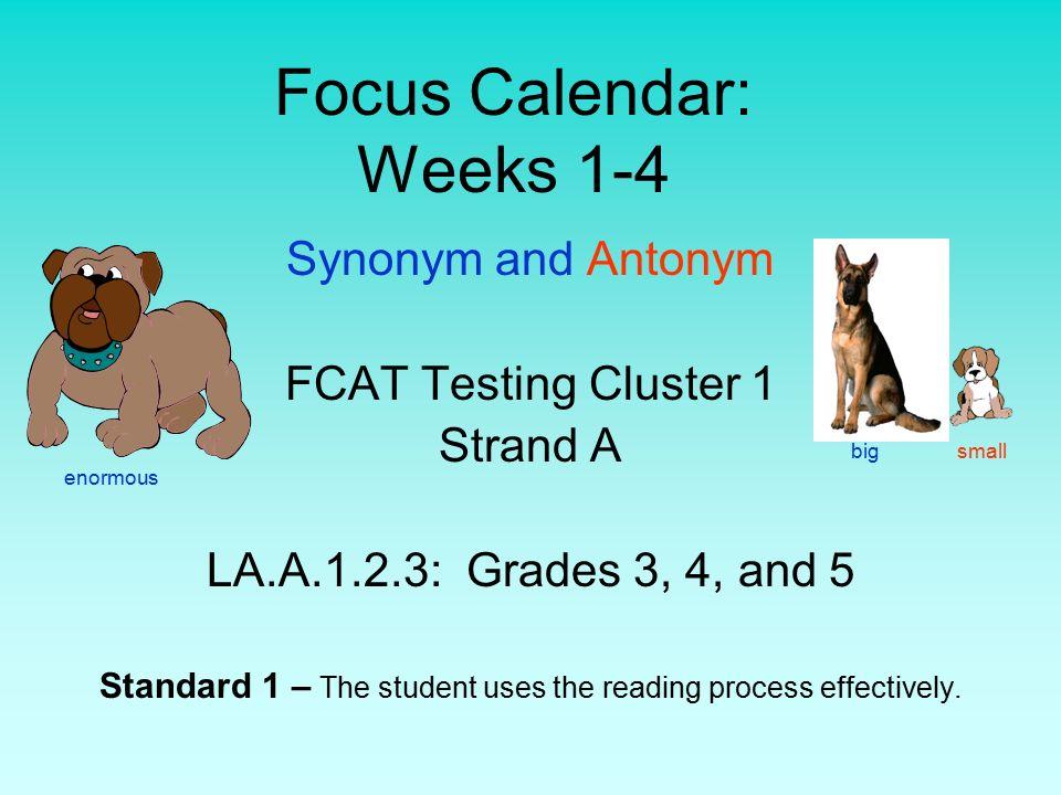 Focus Calendar Weeks 1 4 Synonym And Antonym Fcat Testing Cluster 1