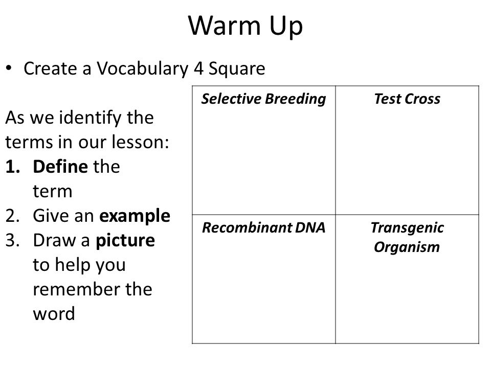 Warm Up Create a Vocabulary 4 Square As we identify the terms in our lesson: 1.Define the term 2.