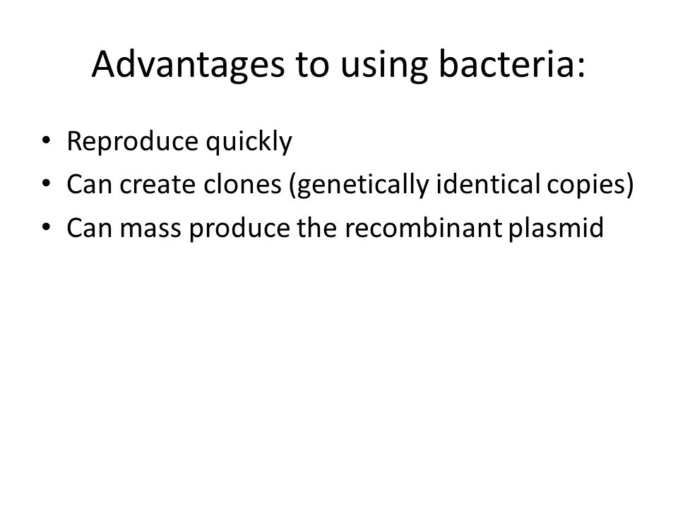 Advantages to using bacteria: Reproduce quickly Can create clones (genetically identical copies) Can mass produce the recombinant plasmid