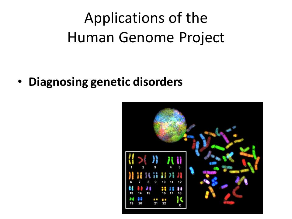 Applications of the Human Genome Project Diagnosing genetic disorders