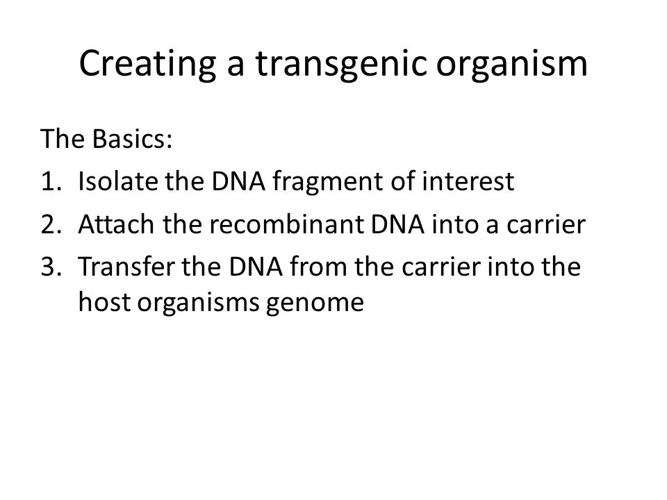 Creating a transgenic organism The Basics: 1.Isolate the DNA fragment of interest 2.Attach the recombinant DNA into a carrier 3.Transfer the DNA from the carrier into the host organisms genome