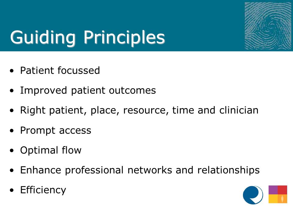 Guiding Principles Patient focussed Improved patient outcomes Right patient, place, resource, time and clinician Prompt access Optimal flow Enhance professional networks and relationships Efficiency