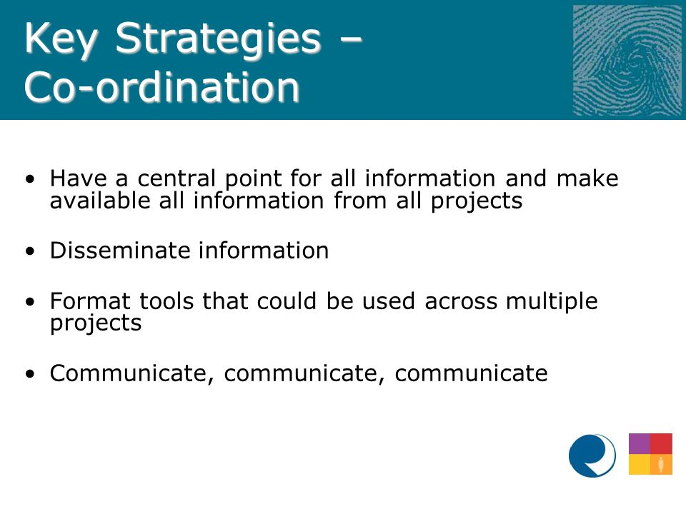 Key Strategies – Co-ordination Have a central point for all information and make available all information from all projects Disseminate information Format tools that could be used across multiple projects Communicate, communicate, communicate