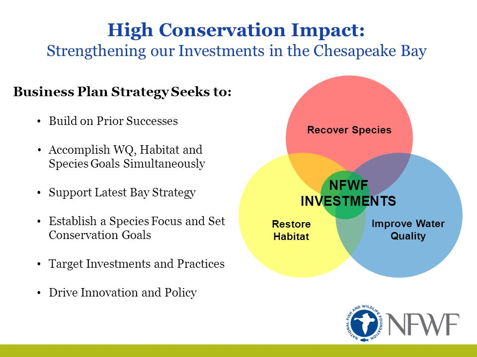 nfwf business plan
