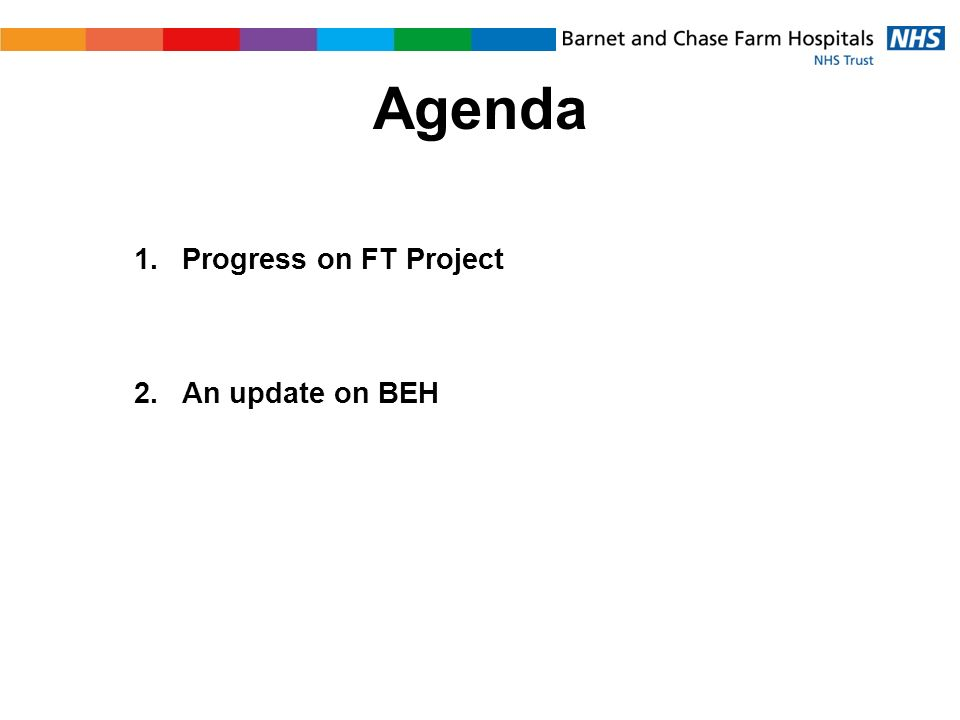 Agenda 1.Progress on FT Project 2.An update on BEH