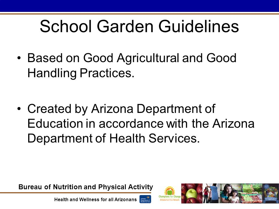 Bureau of Nutrition and Physical Activity Health and Wellness for all Arizonans School Garden Guidelines Based on Good Agricultural and Good Handling Practices.