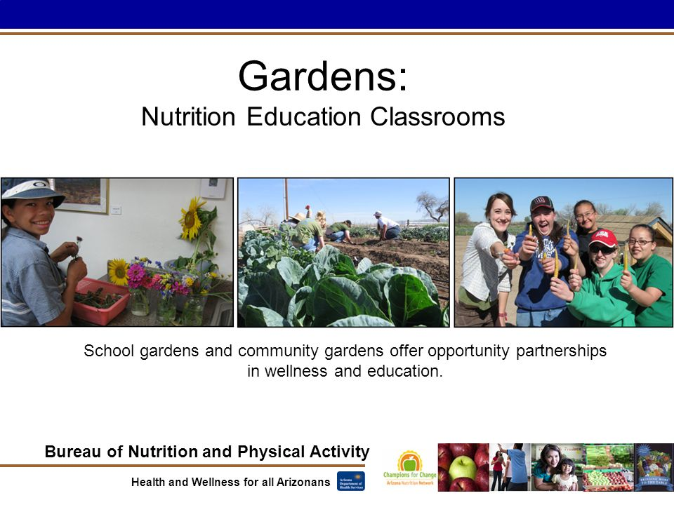Bureau of Nutrition and Physical Activity Health and Wellness for all Arizonans Gardens: Nutrition Education Classrooms School gardens and community gardens offer opportunity partnerships in wellness and education.