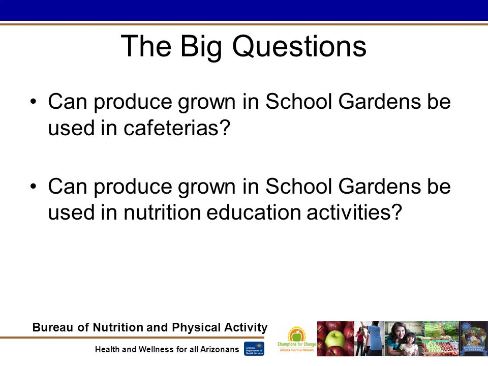 Bureau of Nutrition and Physical Activity Health and Wellness for all Arizonans The Big Questions Can produce grown in School Gardens be used in cafeterias.