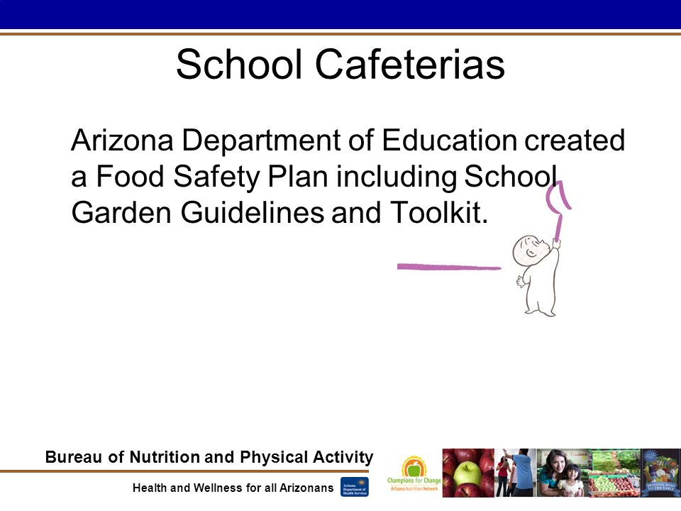 Bureau of Nutrition and Physical Activity Health and Wellness for all Arizonans School Cafeterias Arizona Department of Education created a Food Safety Plan including School Garden Guidelines and Toolkit.