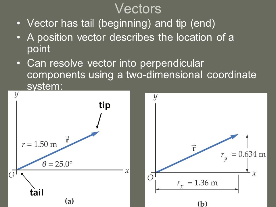 Vectors Vector has tail (beginning) and tip (end) A position vector describes the location of a point Can resolve vector into perpendicular components using a two-dimensional coordinate system: tail tip