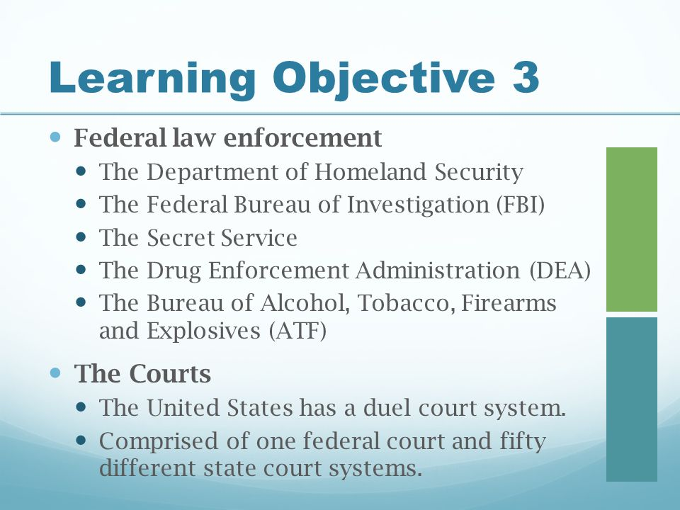 Learning Objective 3 Federal law enforcement The Department of Homeland Security The Federal Bureau of Investigation (FBI) The Secret Service The Drug Enforcement Administration (DEA) The Bureau of Alcohol, Tobacco, Firearms and Explosives (ATF) The Courts The United States has a duel court system.