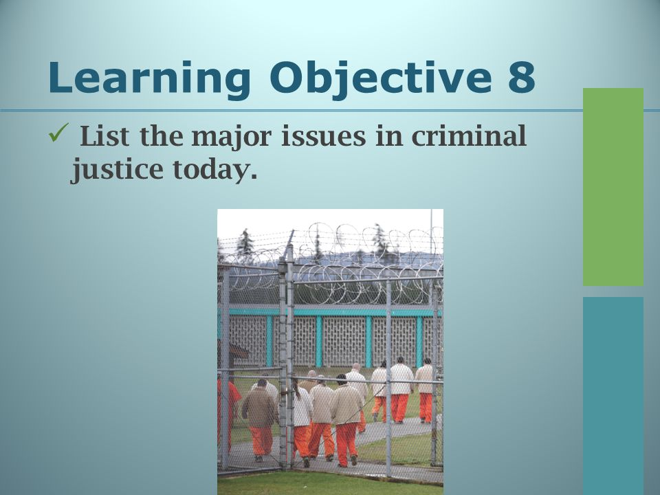 Learning Objective 8 List the major issues in criminal justice today.