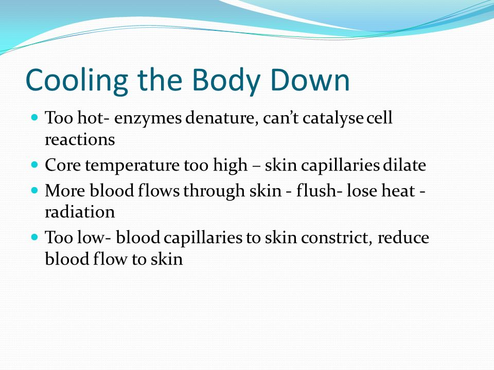 Cooling the Body Down Too hot- enzymes denature, can't catalyse cell reactions Core temperature too high – skin capillaries dilate More blood flows through skin - flush- lose heat - radiation Too low- blood capillaries to skin constrict, reduce blood flow to skin