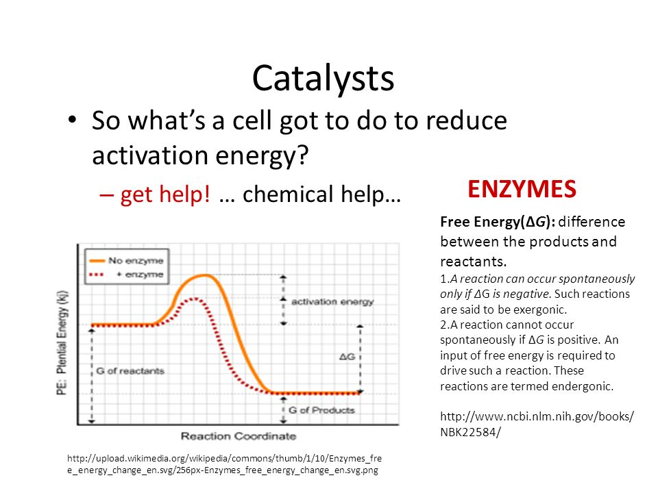 Reducing Activation energy Catalysts – reducing the amount of energy to start a reaction reactant product uncatalyzed reaction catalyzed reaction NEW activation energy