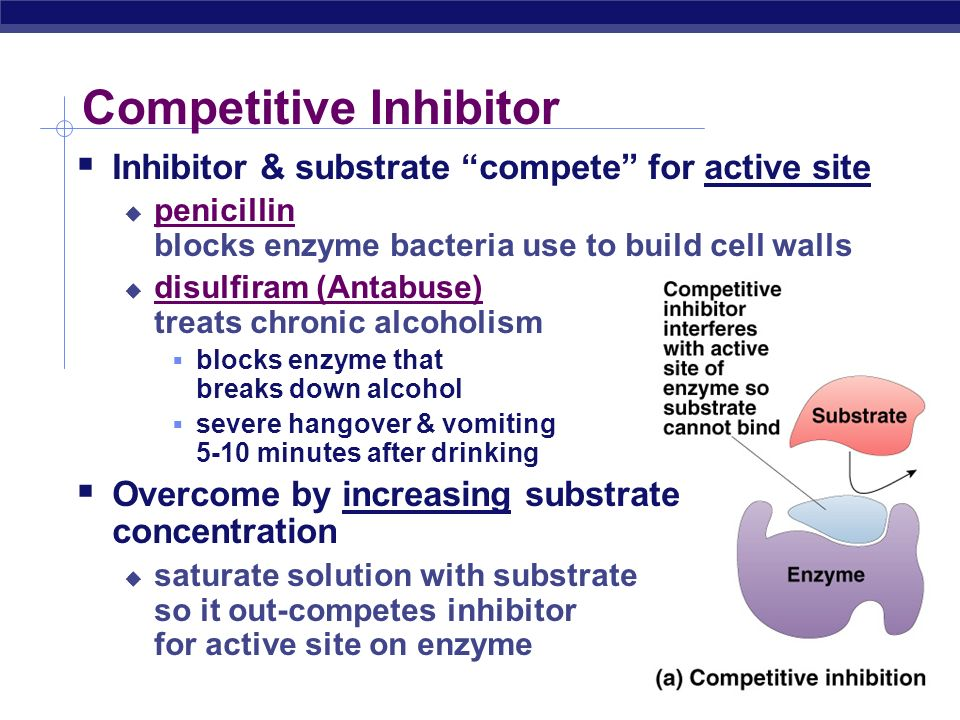 Compounds which regulate enzymes  Inhibitors  molecules that reduce enzyme activity  competitive inhibition  noncompetitive inhibition  irreversible inhibition  feedback inhibition