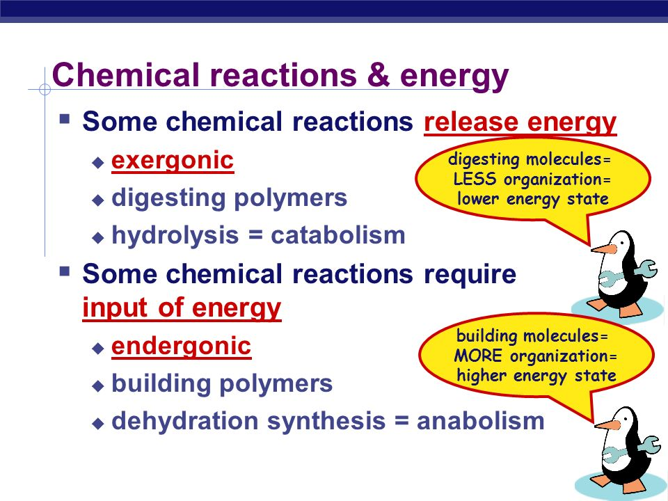 Examples  dehydration synthesis (synthesis)  hydrolysis (digestion) enzyme