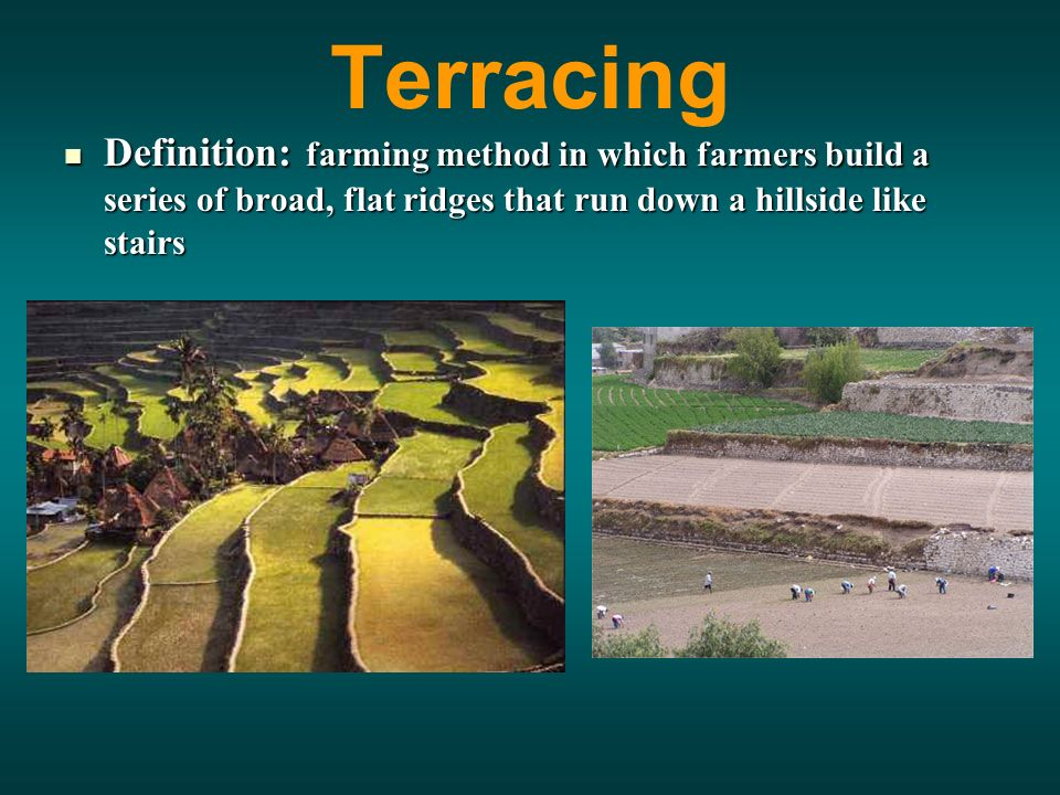 Terracing Definition: farming method in which farmers build a series of broad, flat ridges that run down a hillside like stairs Definition: farming method in which farmers build a series of broad, flat ridges that run down a hillside like stairs