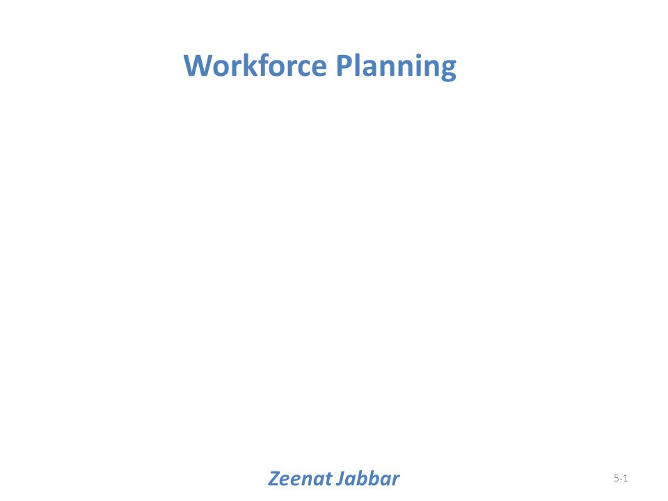 Zeenat Jabbar 5-1 Workforce Planning