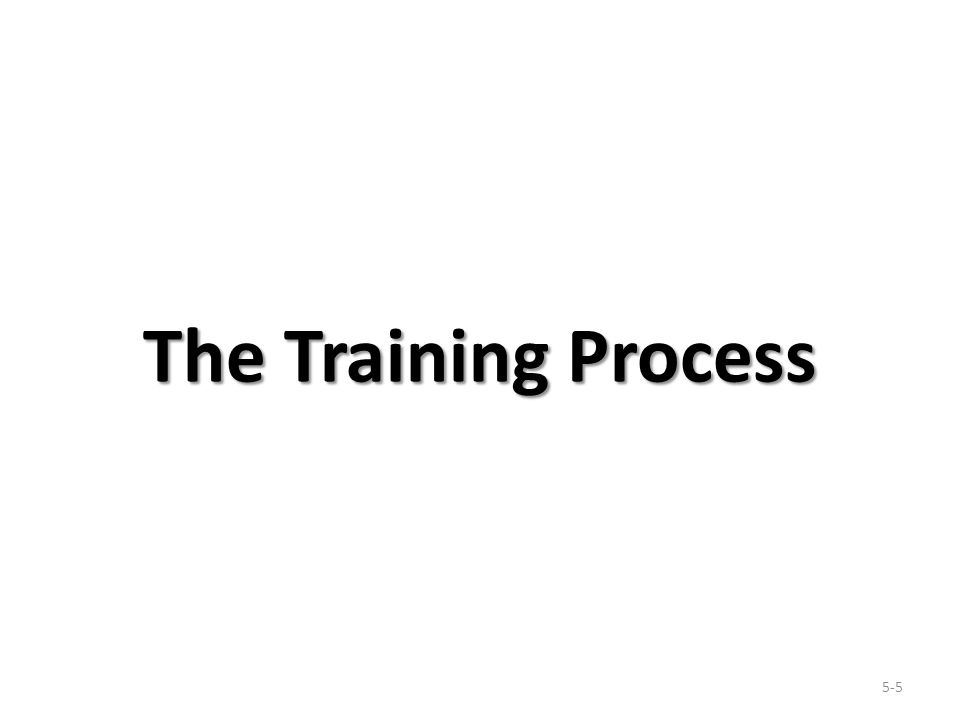 The Training Process 5-5