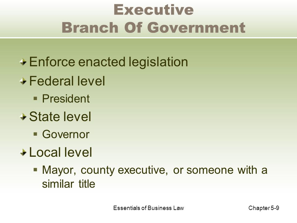 Essentials of Business LawChapter 5-9 Executive Branch Of Government Enforce enacted legislation Federal level  President State level  Governor Local level  Mayor, county executive, or someone with a similar title