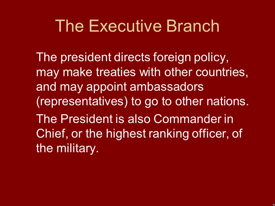 The Executive Branch The President, Vice President, and their cabinets are members of the executive branch.