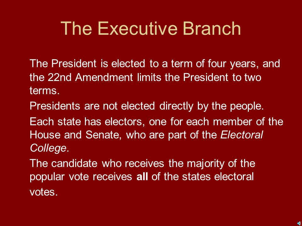 The Executive Branch The president directs foreign policy, may make treaties with other countries, and may appoint ambassadors (representatives) to go to other nations.