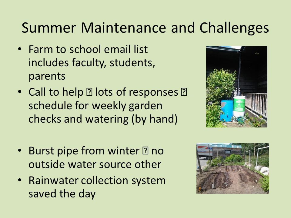 Farm to School Objectives 1 Increase local produce in school