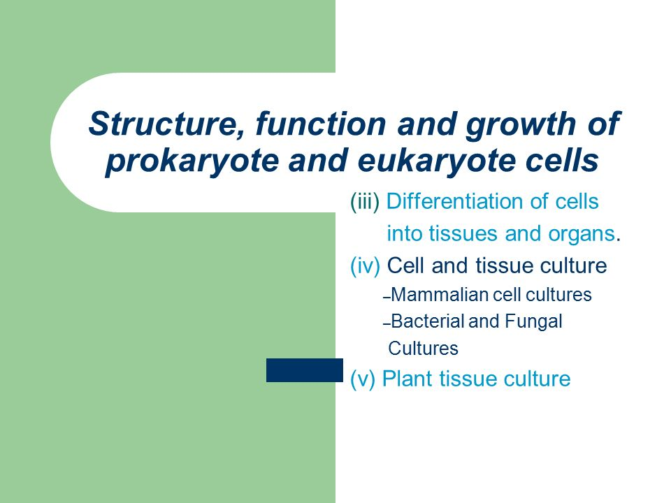 Structure, function and growth of prokaryote and eukaryote