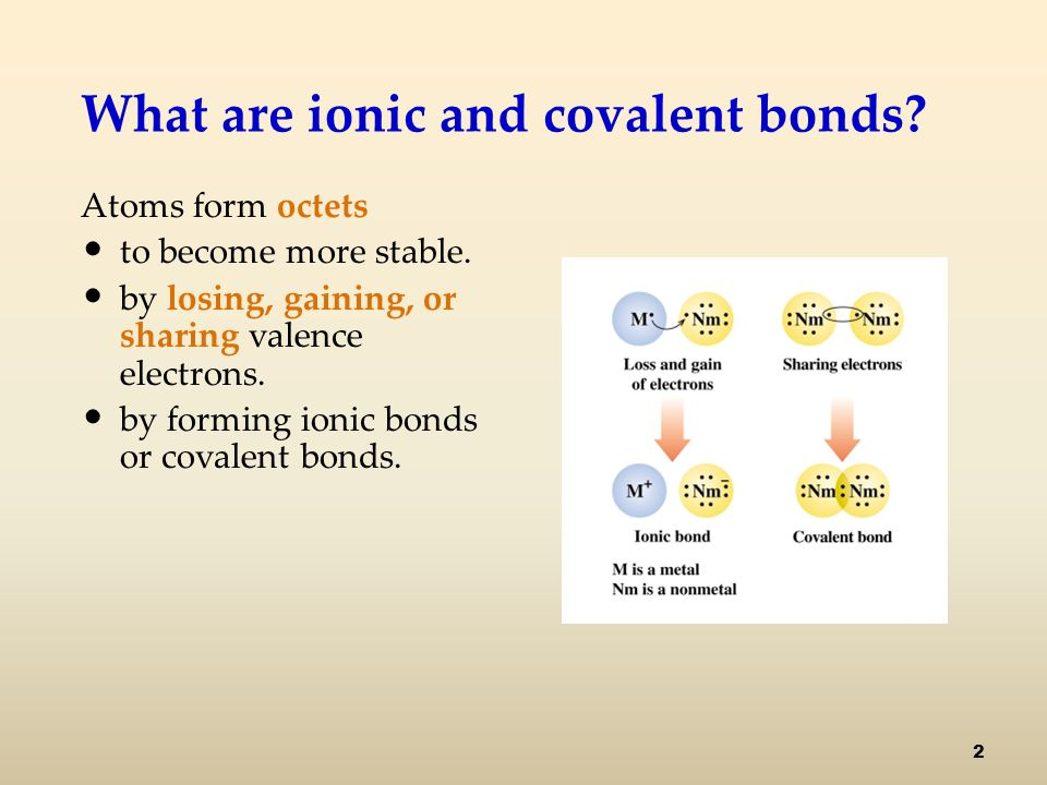 What are ionic and covalent bonds. Atoms form octets to become more stable.